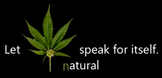 Let Marijuana Speak For Itself